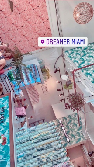 dreamer3